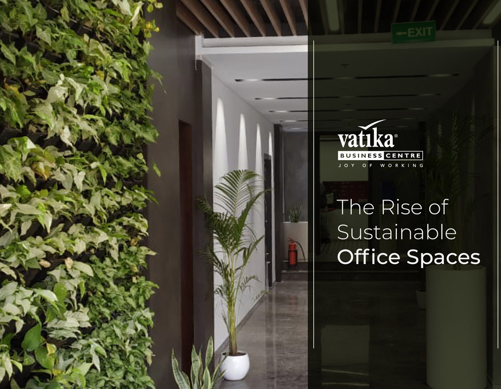 The Rise of Sustainable Office Spaces
